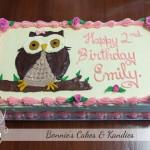 Owl cakes birthday cakes Gympie