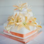Montville wedding cake and photography