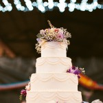 Charis & Sebastian's Aussie World wedding cake with Shane Shepherd Photography