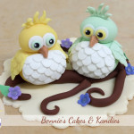 Owl baby shower cake toppers Bonnies Cakes Gympie