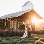 Sophie & Jesse's Kooroomba Vineyard & Lavender Farm Wedding {with Figtree Pictures}